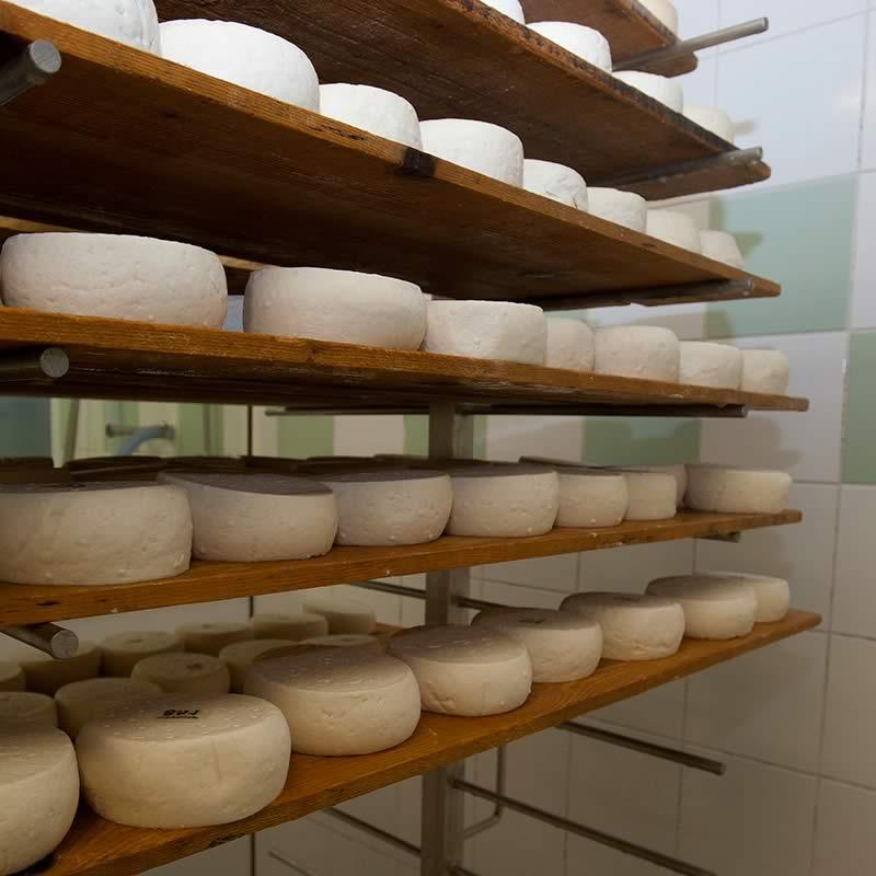 Chevrotin-AOP_fromage-de-chevre_page-fabrication_etape--8